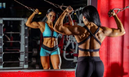 Home Gym Workouts – How To Obtain The Best Benefit In The Shortest Time