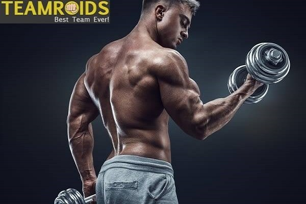 The Difference between Prohormones vs Steroids