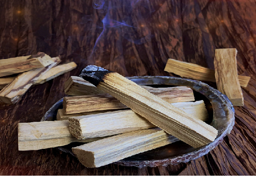 All you need to know about the exceptional PALO Santo