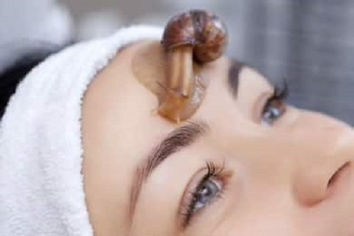 6 benefits of snail, the most prominent of which is skin hydration