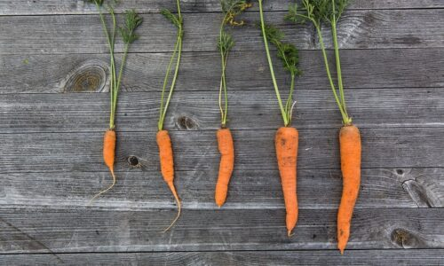 Discover the Benefits of Carrot Juice for Health